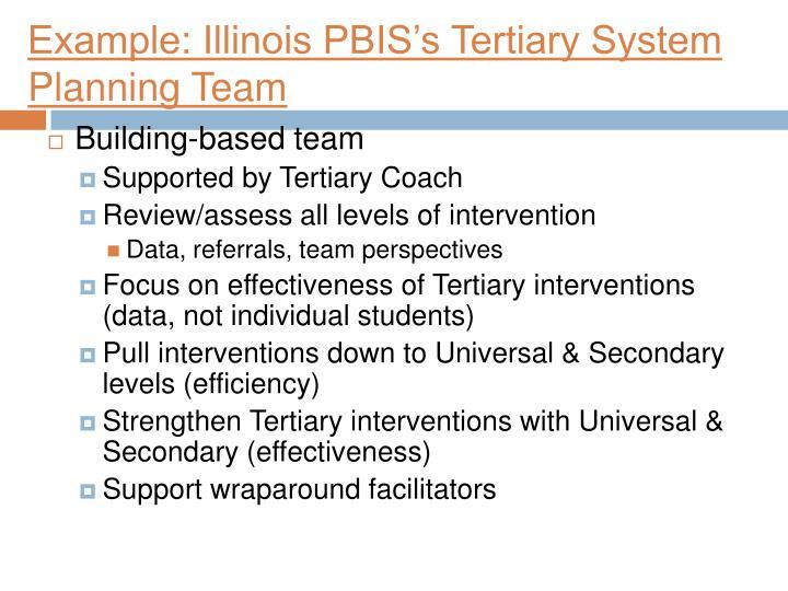 Example: Illinois PBIS's Tertiary System Planning Team