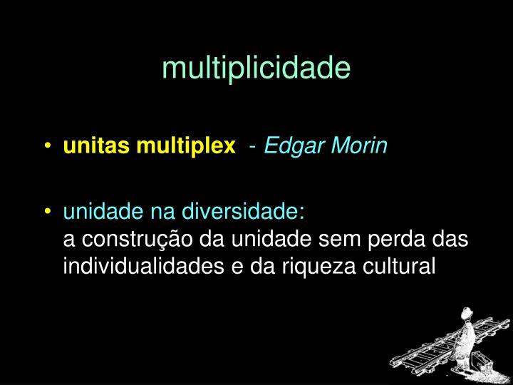 multiplicidade