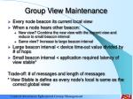 group view maintenance