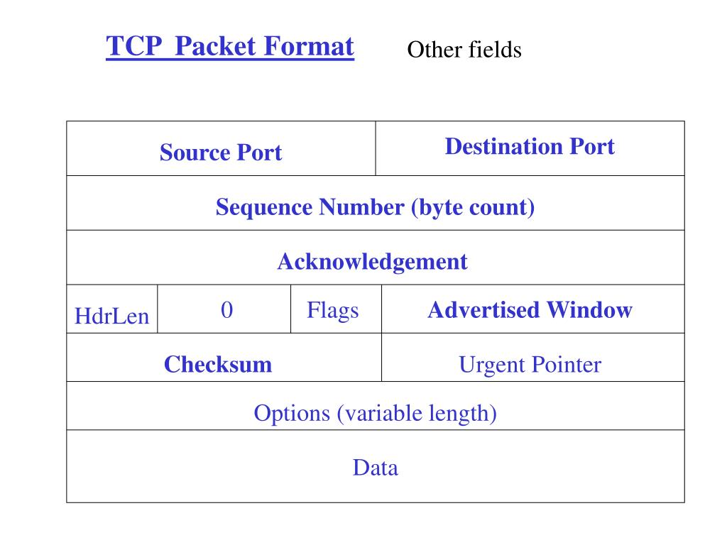 TCP  Packet Format
