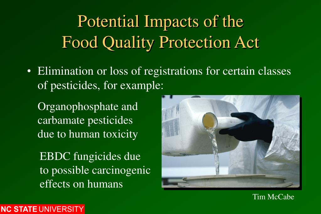 Potential Impacts of the