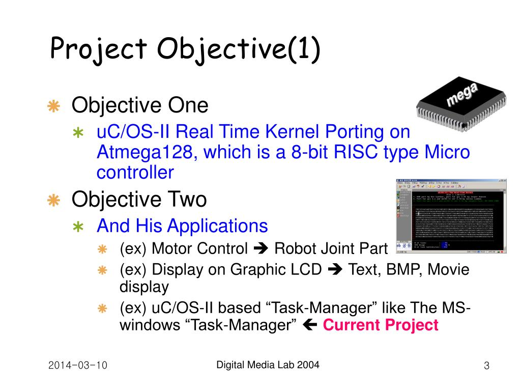 Project Objective(1)