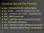common sound file formats