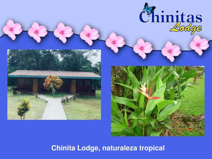Chinita Lodge, naturaleza tropical
