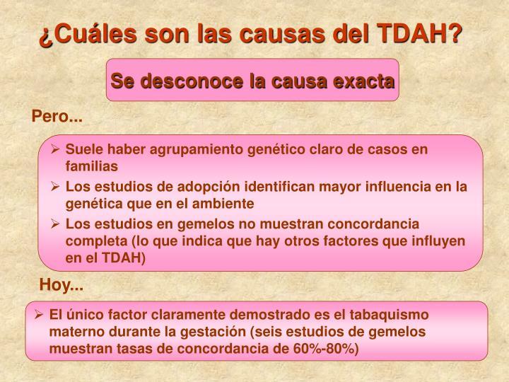 ¿Cuáles son las causas del TDAH?