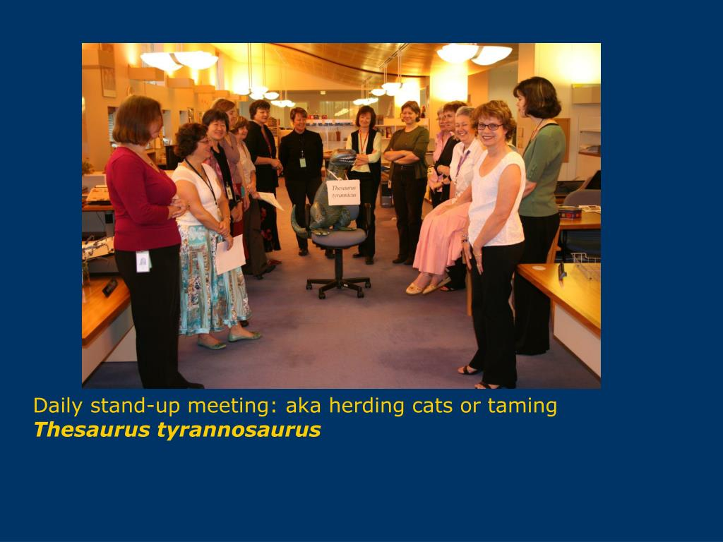 Daily stand-up meeting: aka herding cats or taming