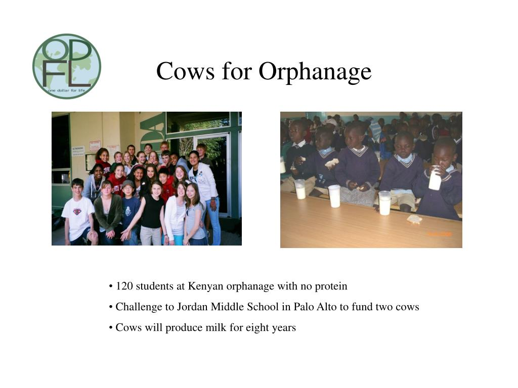 Cows for Orphanage