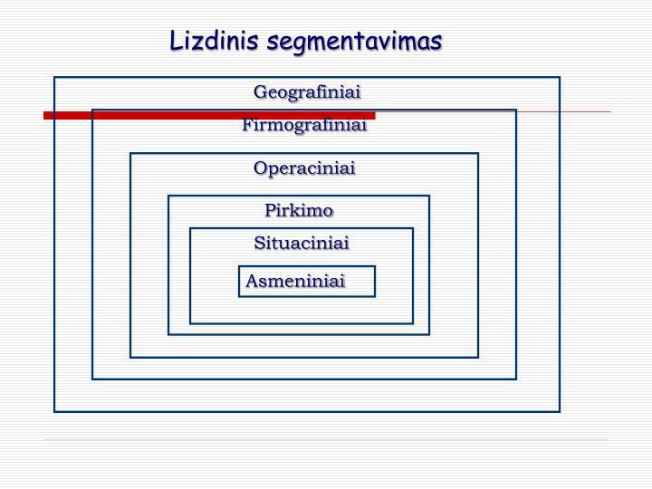 Lizdinis segmentavimas