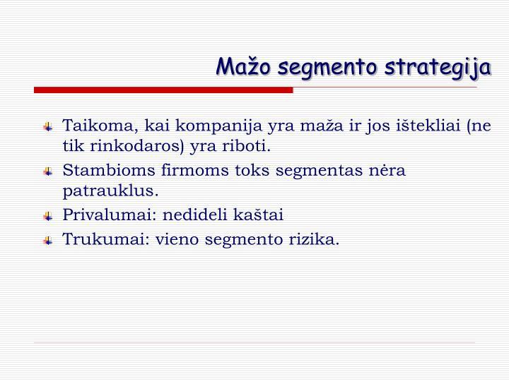 Mažo segmento strategija