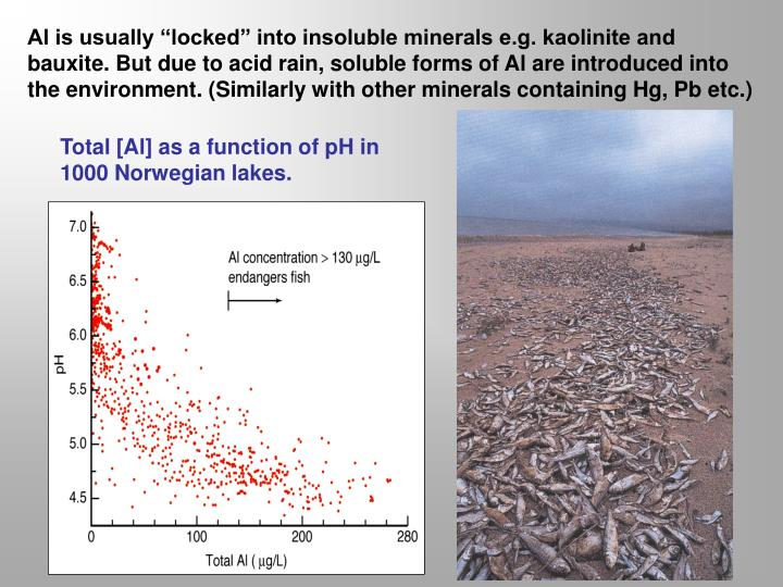"Al is usually ""locked"" into insoluble minerals e.g. kaolinite and bauxite. But due to acid rain, soluble forms of Al are introduced into the environment. (Similarly with other minerals containing Hg, Pb etc.)"