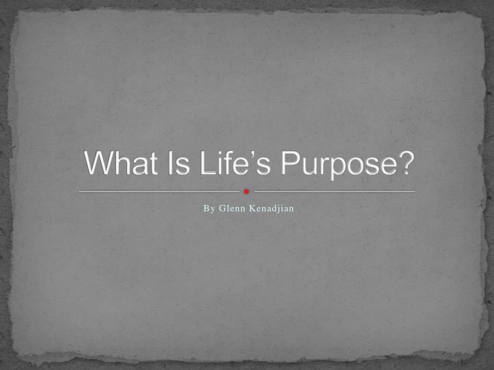 what is life s purpose n.