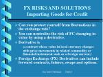 fx risks and solutions importing goods for credit15