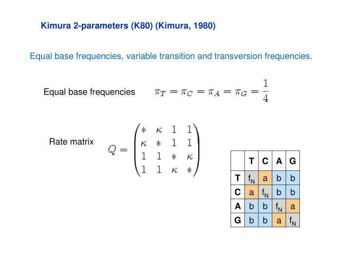 Kimura 2-parameters (K80) (Kimura, 1980)