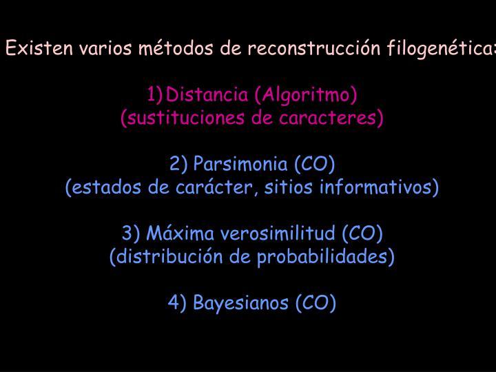 Existen varios métodos de reconstrucción filogenética:
