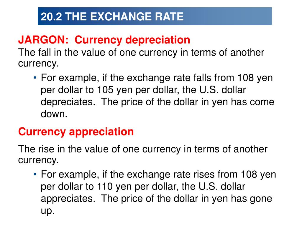 20.2 THE EXCHANGE RATE