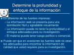 determine la profundidad y enfoque de la informaci n