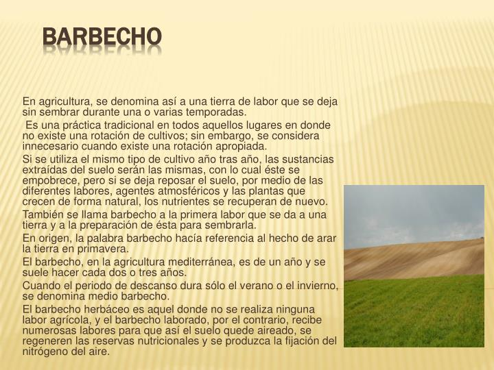 barbecho n.