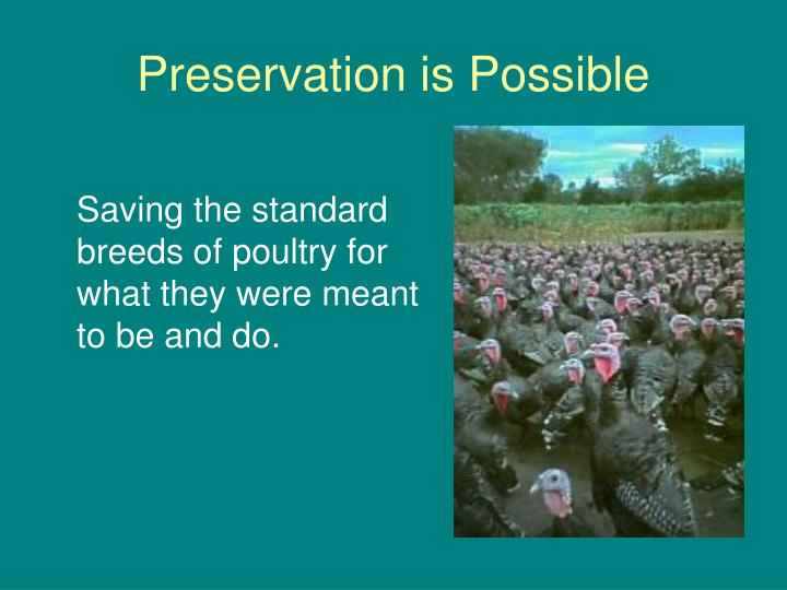 Preservation is Possible