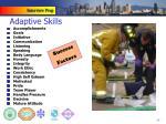 adaptive skills8