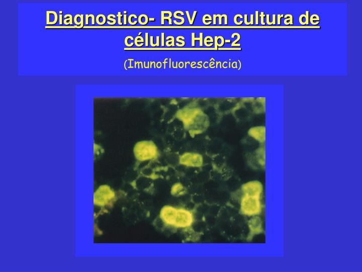 Diagnostico- RSV em cultura de células Hep-2