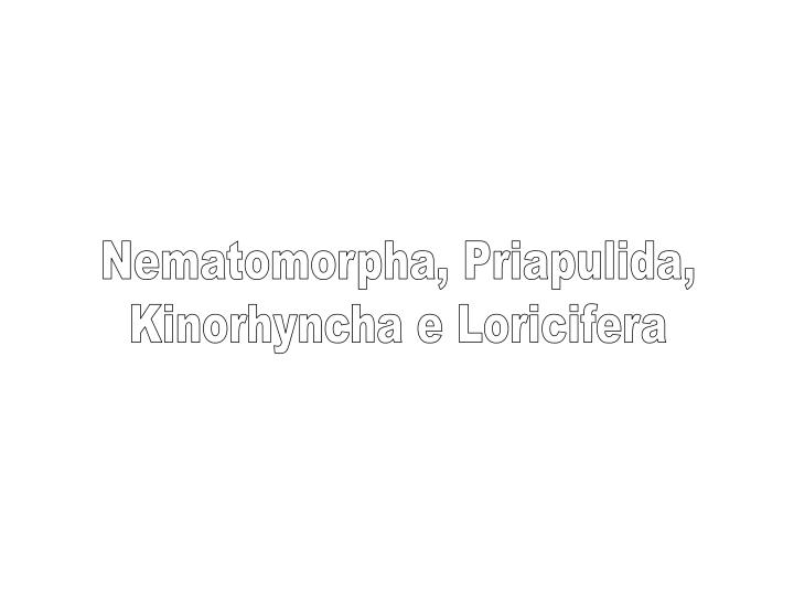 Nematomorpha, Priapulida,