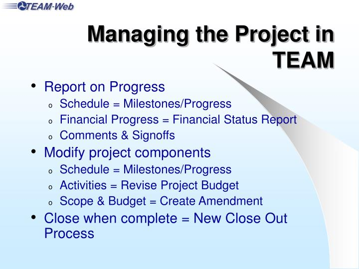 Managing the Project in TEAM
