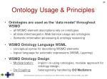 ontology usage principles