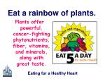 eat a rainbow of plants