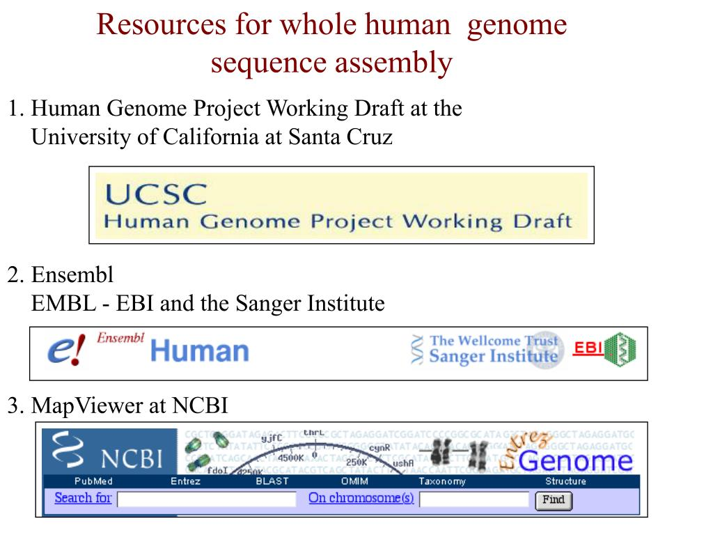 Resources for whole human  genome