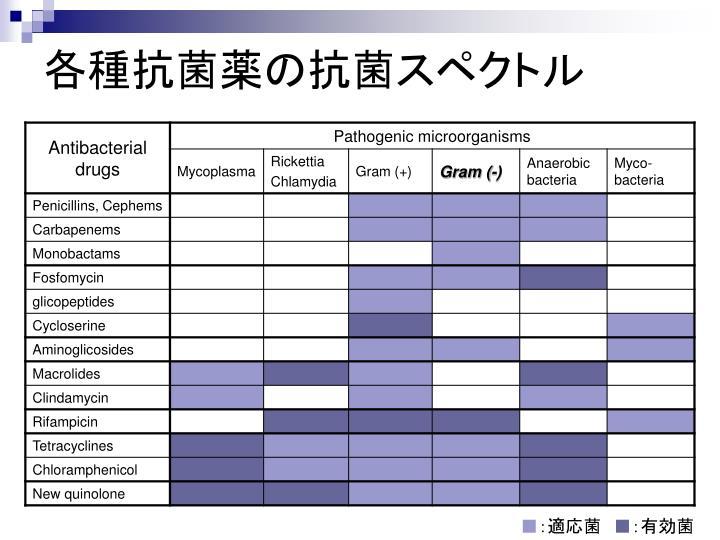 各種抗菌薬の抗菌スペクトル