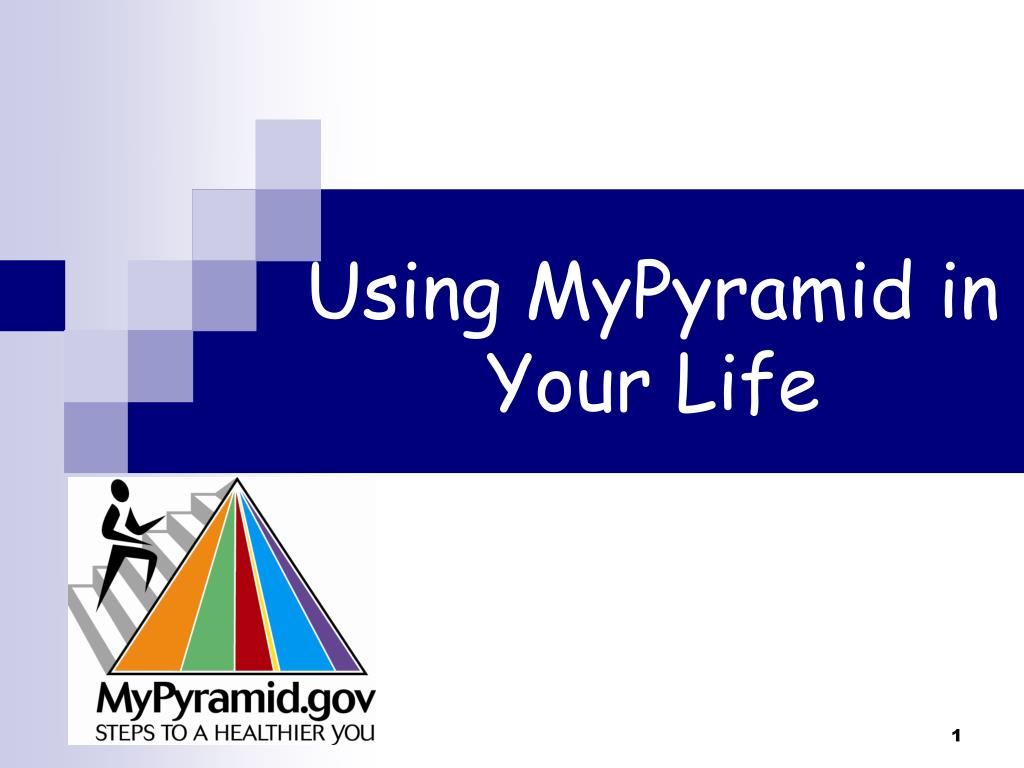 using mypyramid in your life l.