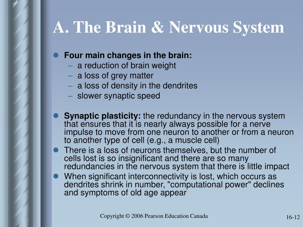 A. The Brain & Nervous System