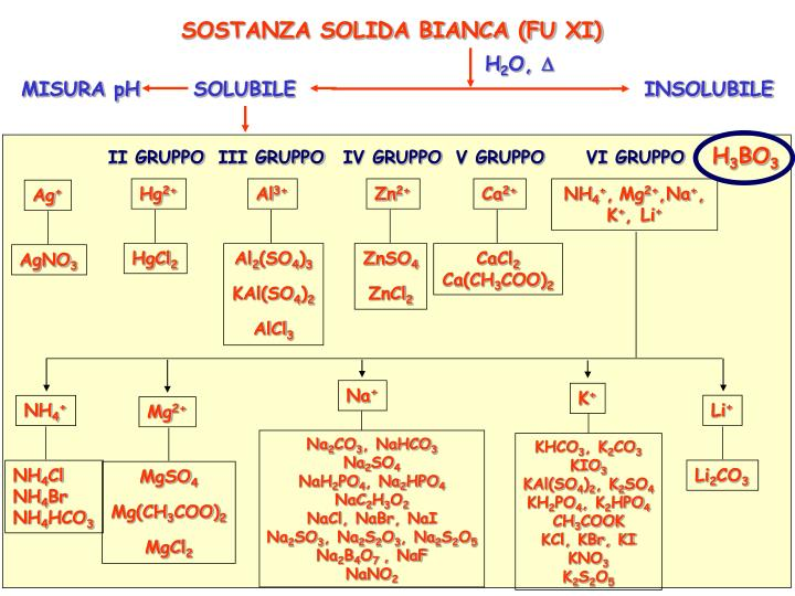 SOSTANZA SOLIDA BIANCA (FU XI)