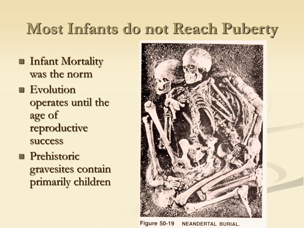 Most Infants do not Reach Puberty