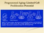 programmed aging limited cell proliferation potential