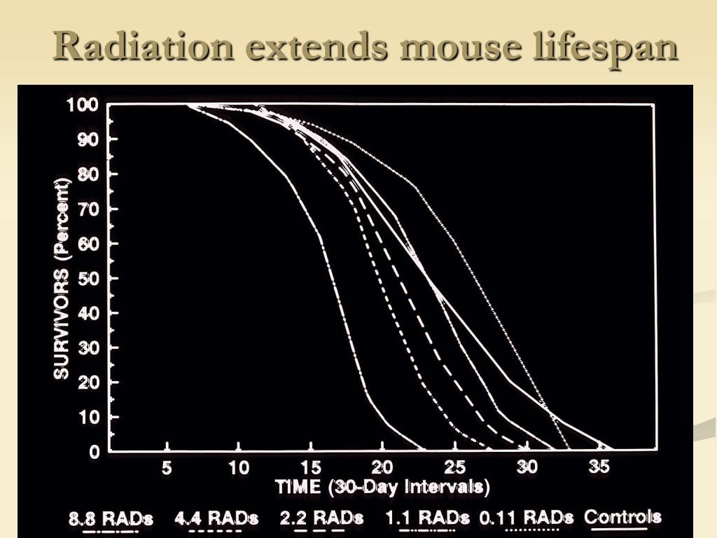 Radiation extends mouse lifespan