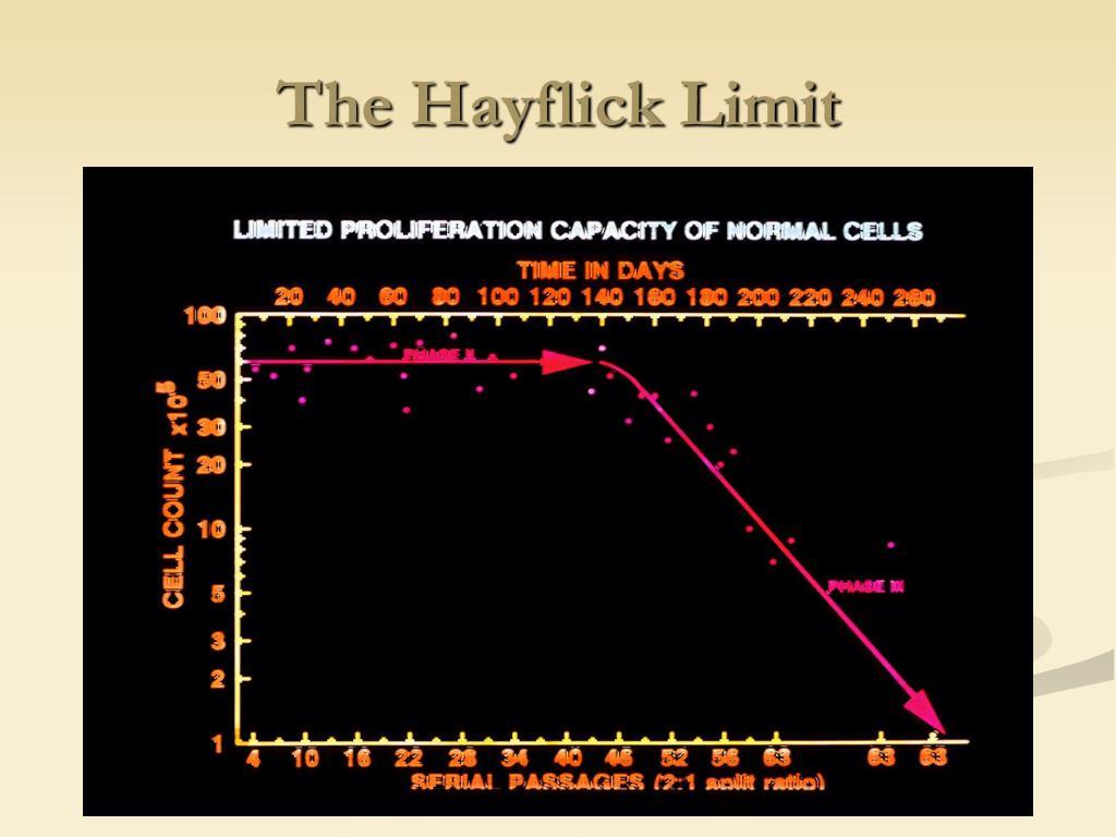 The Hayflick Limit