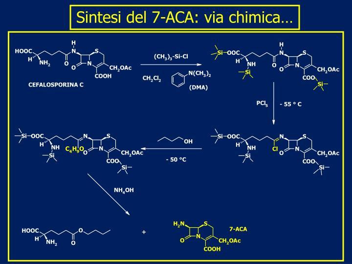 Sintesi del 7-ACA: via chimica…
