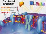 carotenoid protection35
