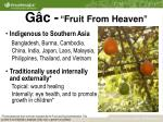g c fruit from heaven