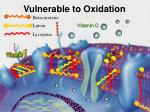 vulnerable to oxidation
