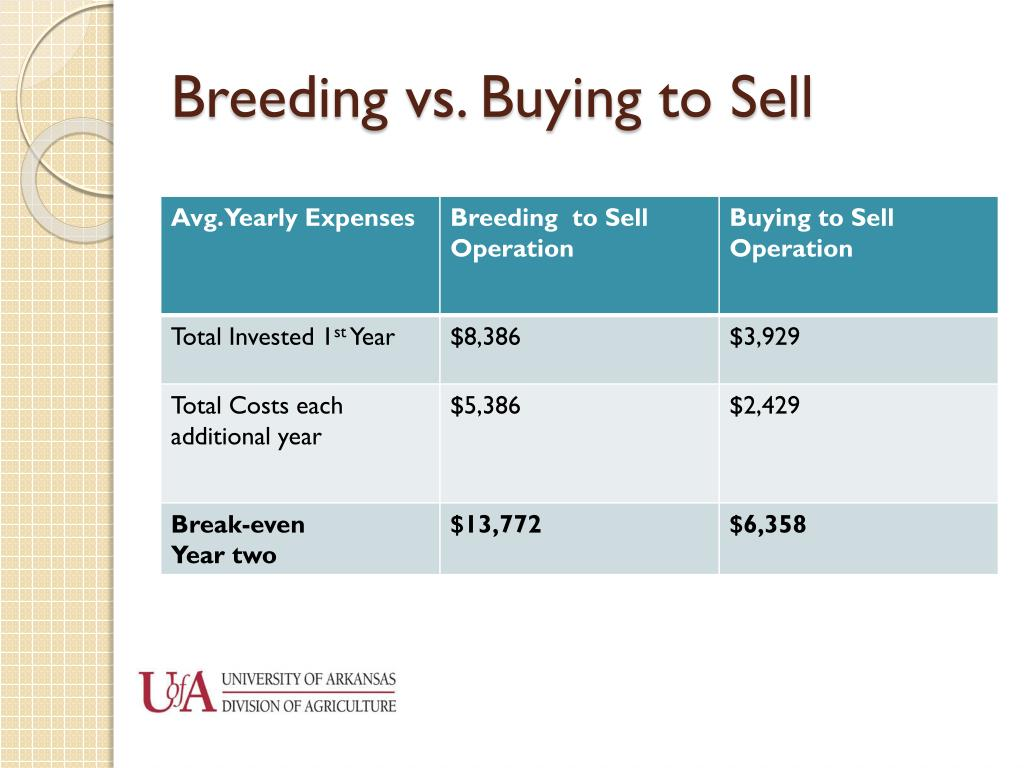 Breeding vs. Buying to Sell