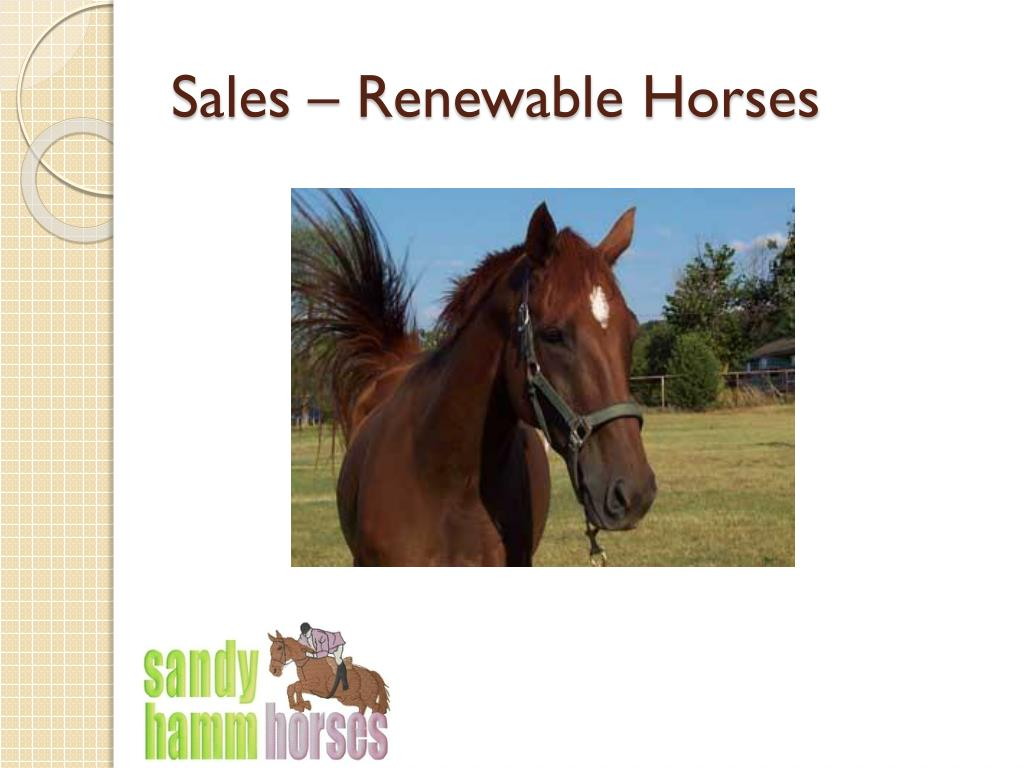 Sales – Renewable Horses