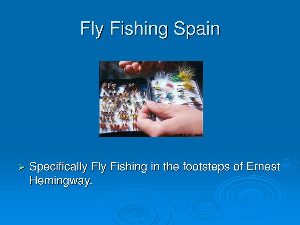 fly fishing spain l.