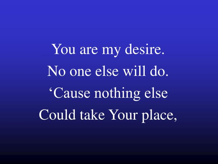 You are my desire no one else will do cause nothing else could take your place
