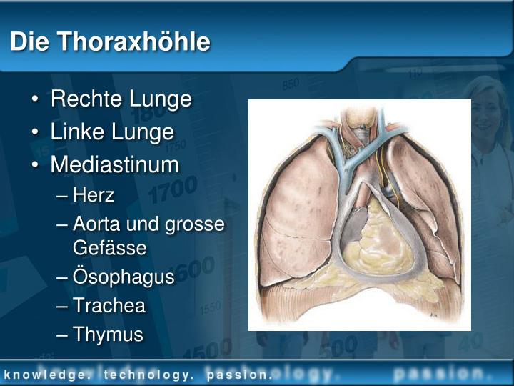 PPT - Handhabung von Thoraxdrainagesystemen PowerPoint Presentation ...