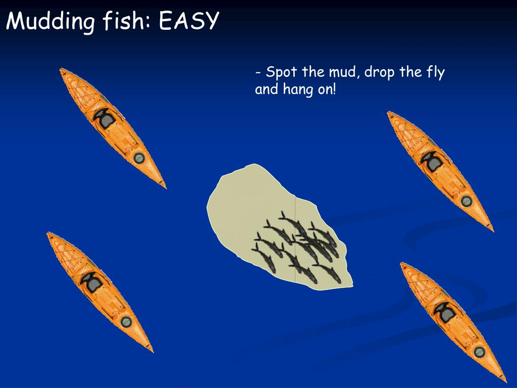 Mudding fish: EASY