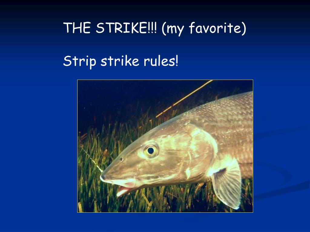 THE STRIKE!!! (my favorite)