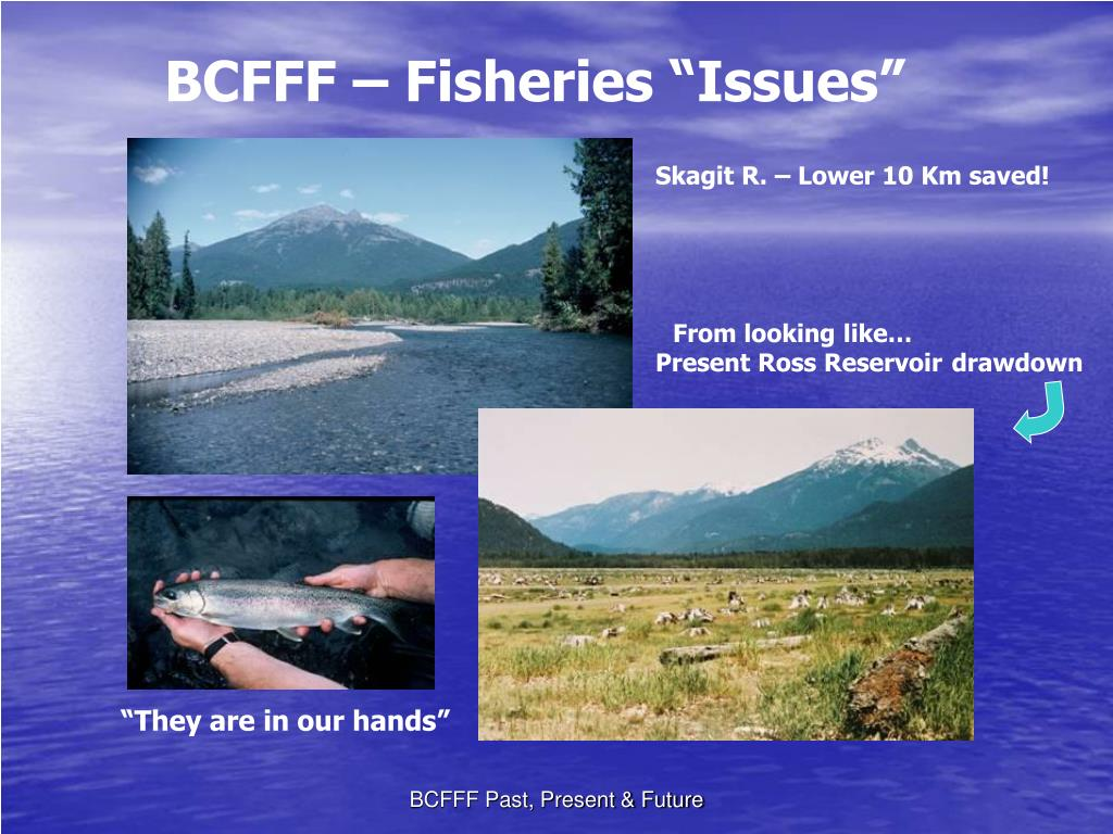 """BCFFF – Fisheries """"Issues"""""""