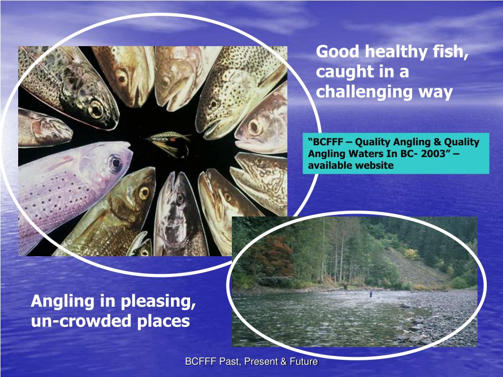 Good healthy fish, caught in a challenging way